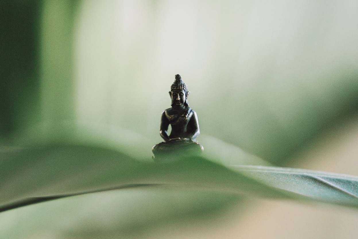 Buddha on a Leaf